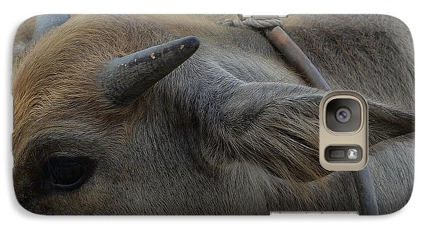 Galaxy Case featuring the photograph  Young Buffalo by Michelle Meenawong