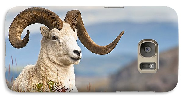 Adult Dall Sheep Ram Resting Galaxy Case by Michael Jones
