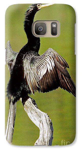 Anhinga Anhinga Anhinga Drying Plumage Galaxy S7 Case by Millard H. Sharp
