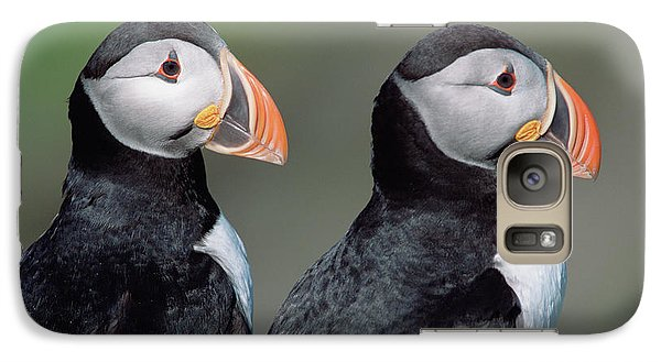 Atlantic Puffins In Breeding Colors Galaxy S7 Case by Yva Momatiuk and John Eastcott