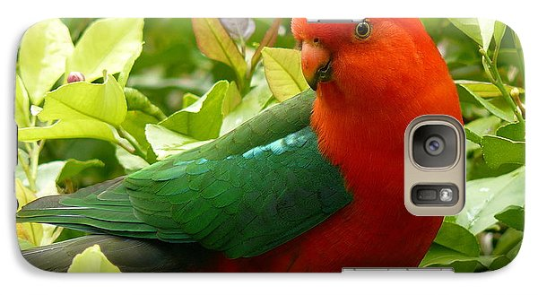 Galaxy Case featuring the photograph Australian King Parrot by Margaret Stockdale