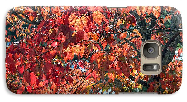 Autumn Leaves Galaxy S7 Case