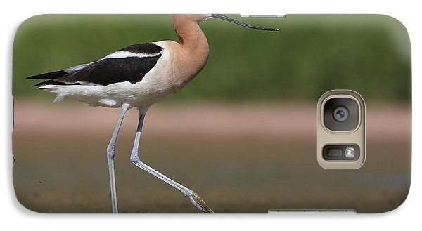 Galaxy Case featuring the photograph Avocet Out For A Walk by Ruth Jolly