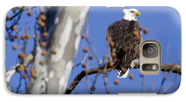 Galaxy Case featuring the photograph Bald Eagle 2 by David Lester