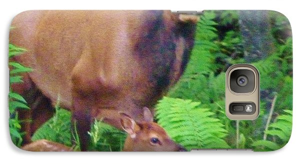 Galaxy Case featuring the photograph Beauty In The Forest by Jeanette Oberholtzer
