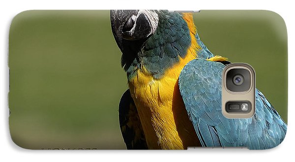 Galaxy Case featuring the photograph Blue Throat Macaw by Melissa Messick