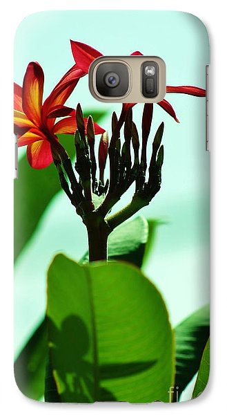 Galaxy Case featuring the photograph Buds And Blossoms by Craig Wood