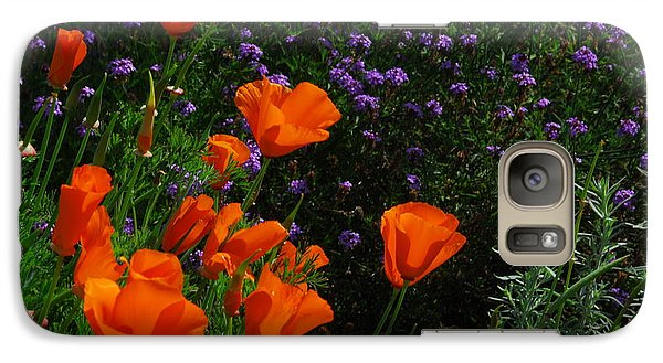 Galaxy Case featuring the photograph California Poppies by Lynn Bauer