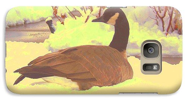 Galaxy Case featuring the pyrography Canadian Goose by Larry Campbell
