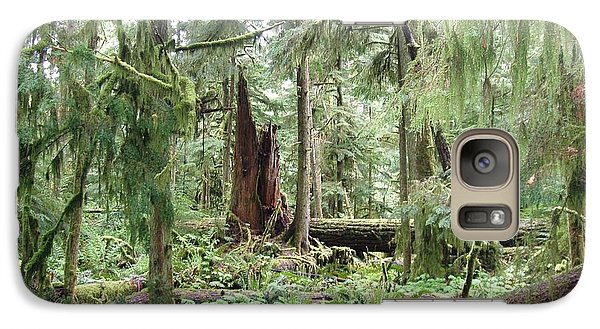 Galaxy Case featuring the photograph Cathedral Grove by Marilyn Wilson