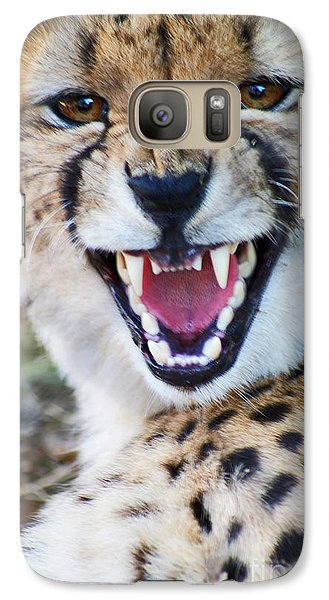 Galaxy Case featuring the painting Cheetah With Attitude by Stanza Widen