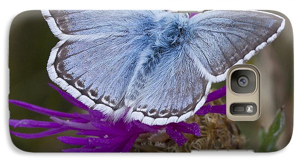 Galaxy Case featuring the photograph Common Blue Butterfly by Shirley Mitchell