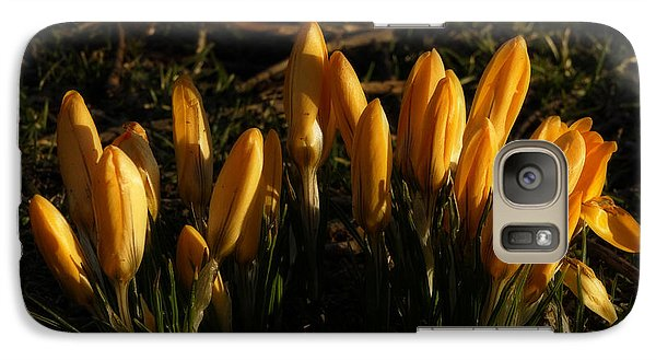 Galaxy Case featuring the photograph Crocus by Inge Riis McDonald