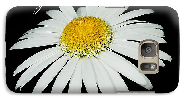 Galaxy Case featuring the photograph Daisy by MaryJane Armstrong