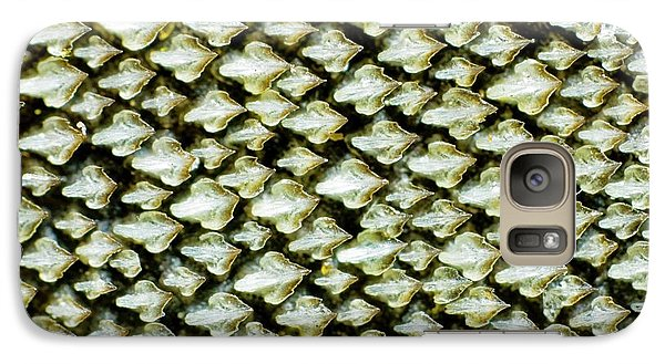 Dogfish Skin Galaxy S7 Case by Dr Keith Wheeler