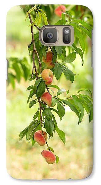 Peach Galaxy S7 Case - Donut Peaches by Iris Richardson