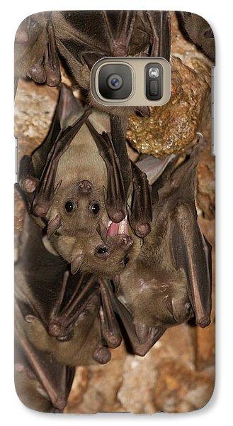 Egyptian Fruit Bat Rousettus Aegyptiacus Galaxy Case by Photostock-israel