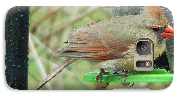 Galaxy Case featuring the photograph Female Cardinal by Betty-Anne McDonald