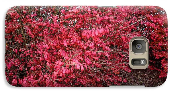 Galaxy Case featuring the photograph Fire Bush by Pete Trenholm