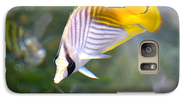 Galaxy Case featuring the photograph Fish In The Sunlight  by Lehua Pekelo-Stearns