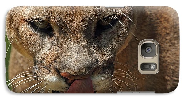 Galaxy Case featuring the photograph Florida Panther by Meg Rousher