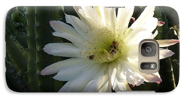 Galaxy Case featuring the photograph Flowering Cactus 1 by Mariusz Kula