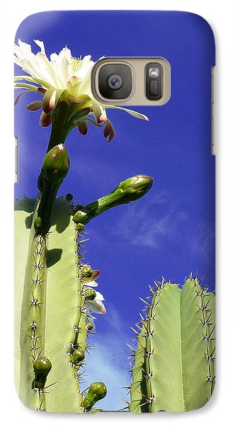 Galaxy Case featuring the photograph Flowering Cactus 2 by Mariusz Kula