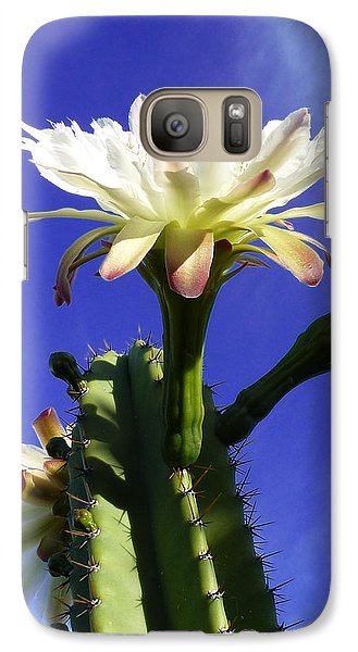 Galaxy Case featuring the photograph Flowering Cactus 3 by Mariusz Kula