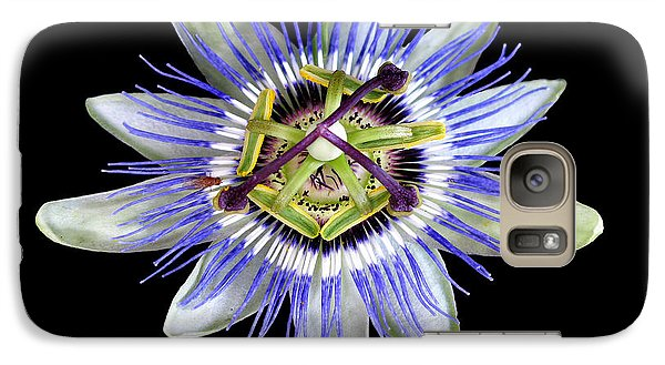 Galaxy Case featuring the photograph Fly's Passion by Jennie Breeze