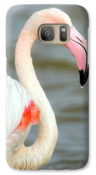 Greater Flamingo Phoenicopterus Roseus Galaxy S7 Case by Panoramic Images