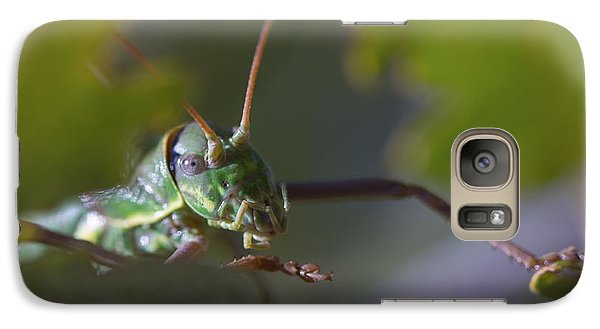 Galaxy Case featuring the photograph Green Grasshopper Ephippiger by Jivko Nakev