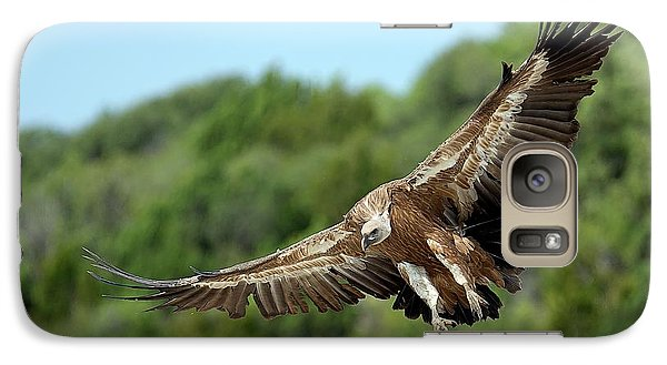 Griffon Vulture Galaxy Case by Nicolas Reusens