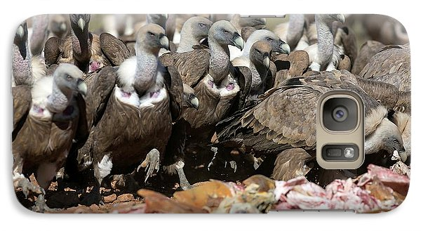 Griffon Vultures Feeding Galaxy Case by Nicolas Reusens