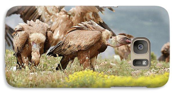 Griffon Galaxy S7 Case - Griffon Vultures Scavenging by Dr P. Marazzi