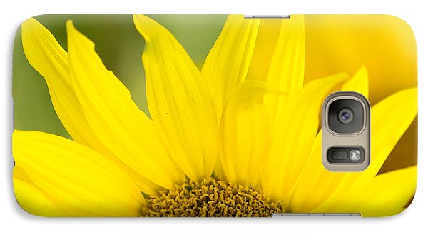 Galaxy Case featuring the photograph Here Comes The Sun by Cathy Donohoue