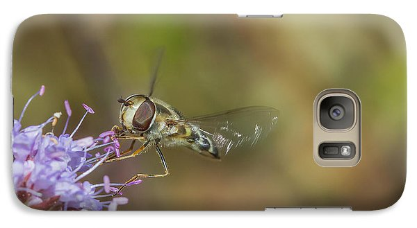 Galaxy Case featuring the photograph Hoverefly - Syrphus Vitripennis by Jivko Nakev