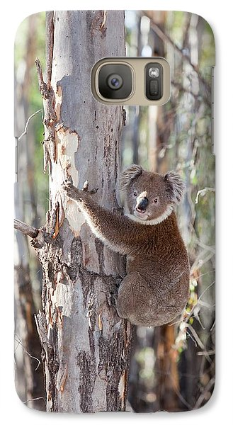 Koala Bear Galaxy S7 Case