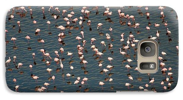 Lesser Flamingo, Lake Nakuru, Kenya Galaxy S7 Case by Panoramic Images