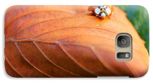 Galaxy Case featuring the photograph Lovely Lady by Candice Trimble