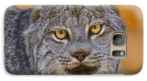 Galaxy Case featuring the photograph Lynx by Steve Zimic