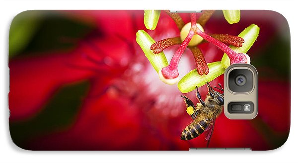 Galaxy Case featuring the photograph Macro Photograph Of A Bee Collecting Pollen. by Zoe Ferrie