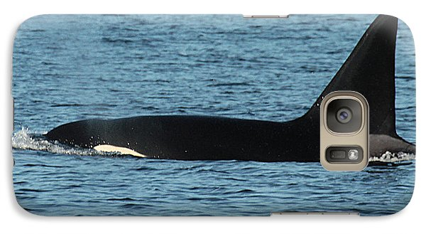 Galaxy Case featuring the photograph Male Orca Killer Whale In Monterey Bay California 2013 by California Views Mr Pat Hathaway Archives