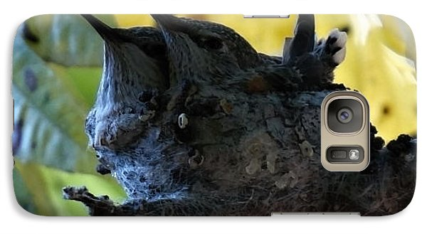 Galaxy Case featuring the photograph Nesting And Humming by Jeremy McKay