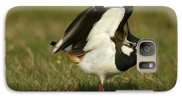 Lapwing Galaxy S7 Case - Northern Lapwing by Helmut Pieper