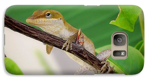 Galaxy Case featuring the photograph On Guard by TK Goforth