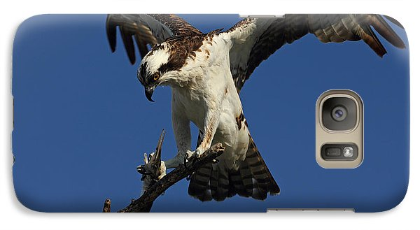 Galaxy Case featuring the photograph Osprey With A Fish Photo by Meg Rousher