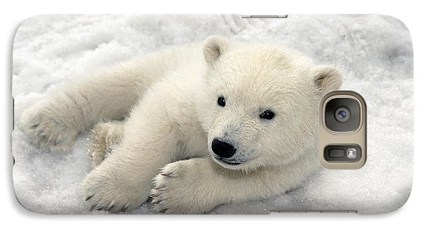 Polar Bear Cub Playing In Snow Alaska Galaxy Case by Mark Newman