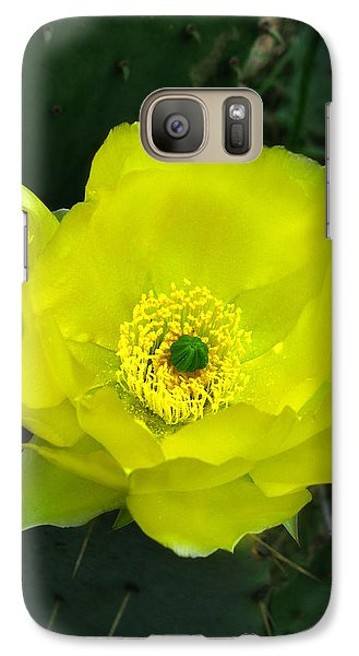 Galaxy Case featuring the photograph Prickly Pear Cactus by William Tanneberger
