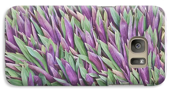 Galaxy Case featuring the photograph Purple And Green by Holly Kempe