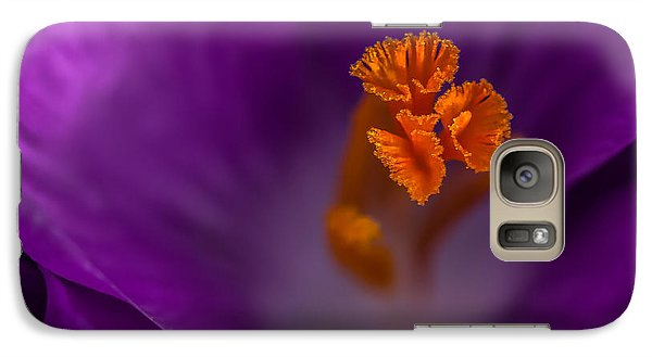 Galaxy Case featuring the photograph Purple Crocus by Bob Noble Photography